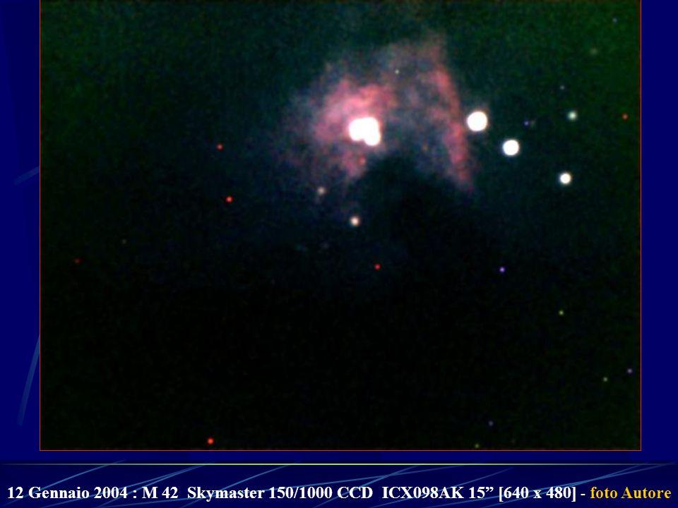 12 Gennaio 2004 : M 42 Skymaster 150/1000 CCD ICX098AK 15 [640 x 480] - foto Autore